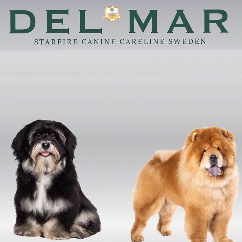 Delmarpoms-4-800x800